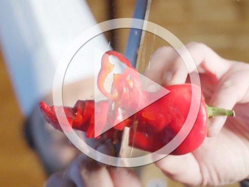 Video aziendale Locanda Zanella